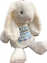Personalised Bunny Rabbit, Teddy Soft Toy